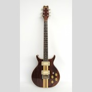 "Washburn Eagle rosewood #802406, 1972 ""Wing Series"" guitar."