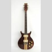 Washburn Eagle rosewood #802406, 1972
