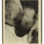 1 of 2 Willem De Kooning (United States, Netherlands, Germany 1904-1997), (2) signed black and white photograph prints