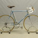 """Raleigh Professional 22 1/2"""" Frame Bicycle"""