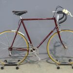 Raleigh Pro Light Weight Bicycle